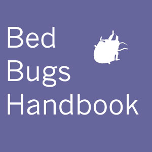 Bed Bugs Winnipeg Resources And Treatment Tips