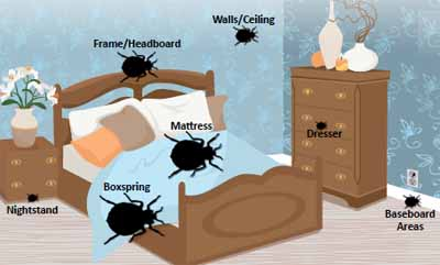 bed bug hiding places - room diagram