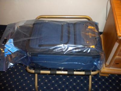 Keep luggage elevated and away from walls.  If it will fit, place entire luggage in a Ziploc Big Bag
