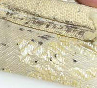 bed bug mattress signs