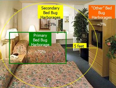 Diagram of where bed bugs hide in a hotel room