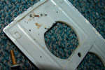 bed bug infested electrical plate