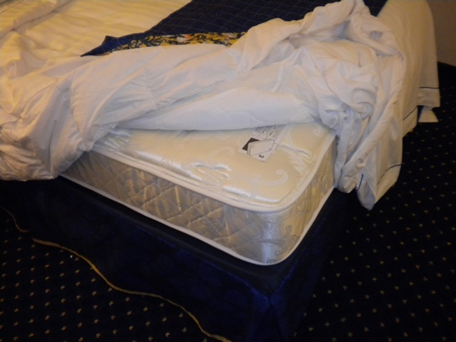 bed bug free mattress