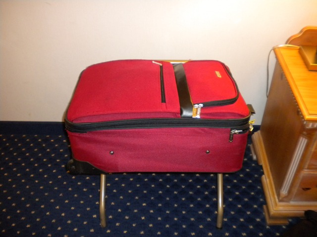 Bed Bugs Suitcase In Car
