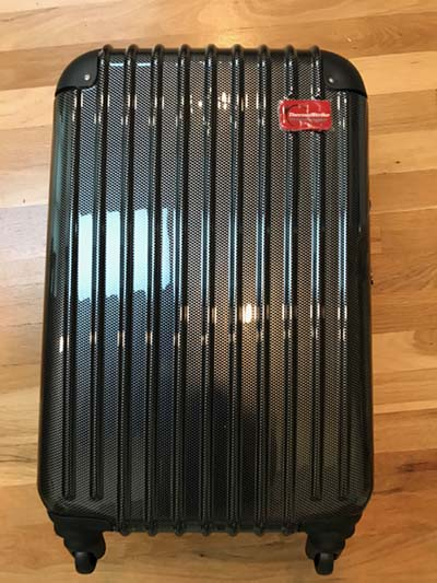 bed bug proof suitcase