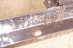 Bed bugs on inside furniture track